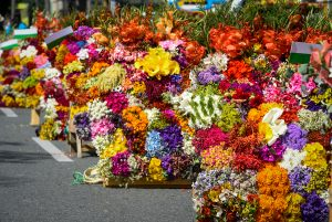 Annual flower parade, Festival of the flowers, Medellin