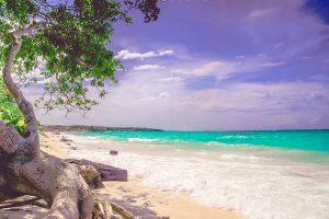 Playa Blanca Beach, Baru Bin