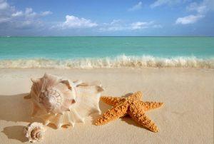 mar dei caraibi-messico